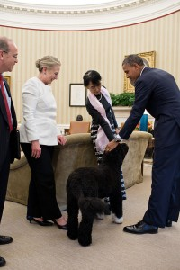 Bo, the dog of President Barack Obama, amuses Burmese Opposition Leader Aung San Suu Kyi